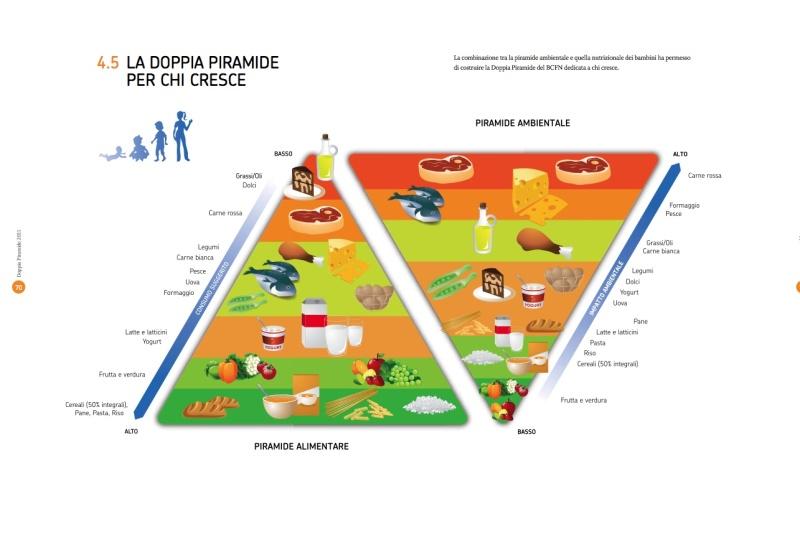 Piramide ambientale 2