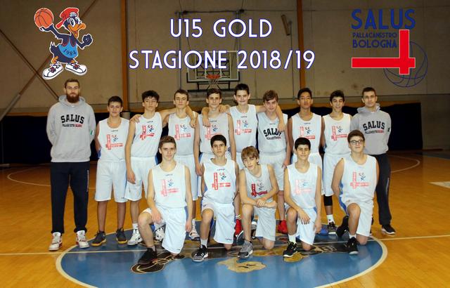 U15 Gold 2018/2019